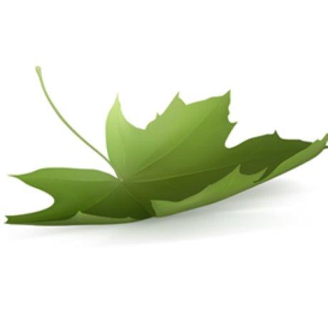 Canada Green Building Council pledges to battle climate change