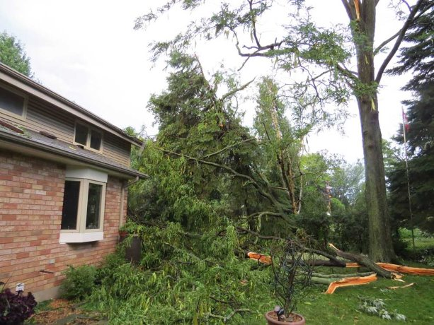 Extreme weather looms large in new building code mandate
