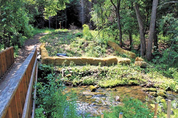 Environmental sustainability key to new Cold Creek bridges