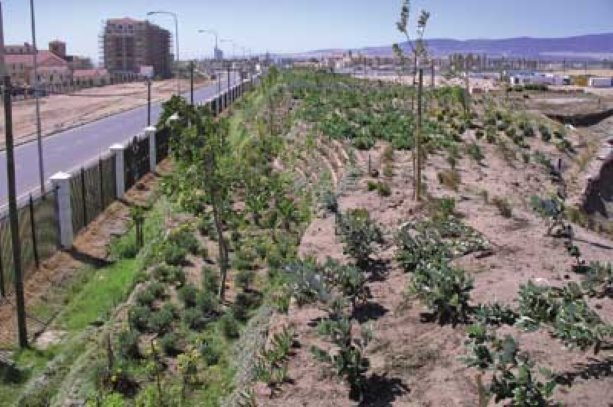 Keeping the noise down highway traffic noise barriers for Dsb landscape architects