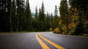 Tourist development mulled at summit of Vancouver Island's Malahat Drive