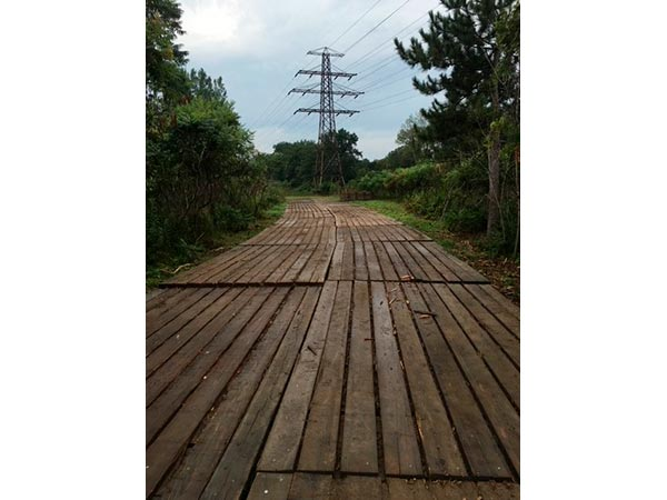 powerlines and access mats (2) - web