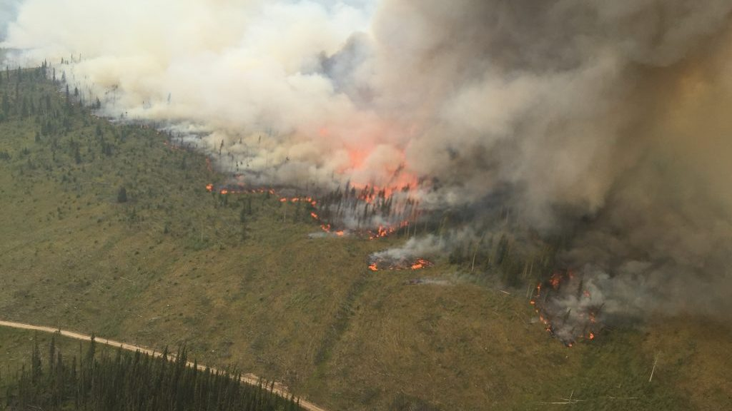 B.C. construction industry unites to fight wildfires