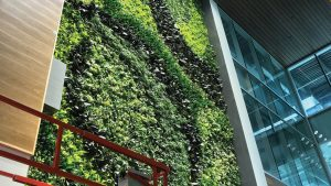 Living walls breathe life into construction projects