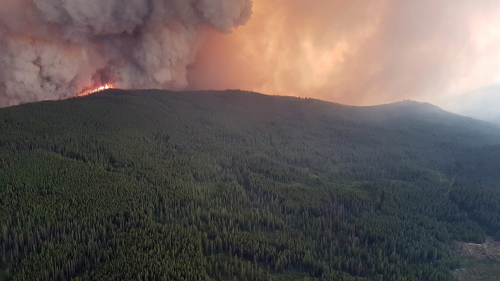 B.C. releases emergency response action plan in wake of natural disasters