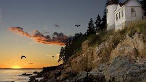 Ferry operator says Nova Scotia to Maine port shift decision still in development