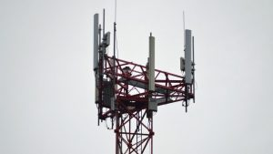 SaskTel to build 74 new cell towers in rural areas