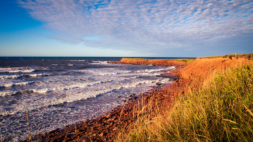 Anne's Land (aka Prince Edward Island) is approaching 2020 in great shape - Daily Commercial News