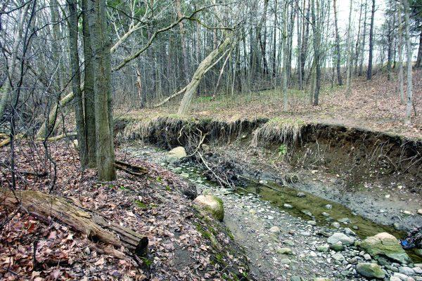 Upper Kidd's Creek April 2017 (1)-CMYK