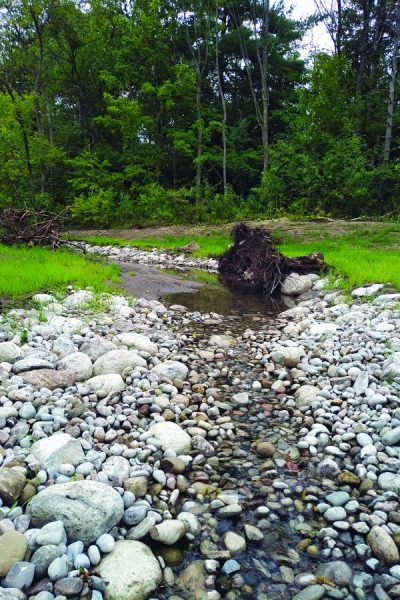 Upper Kidd's Creek Sept 2019 – was taken after the restoration.