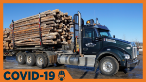 B.C. holds off on wood export changes to help industry weather COVID-19