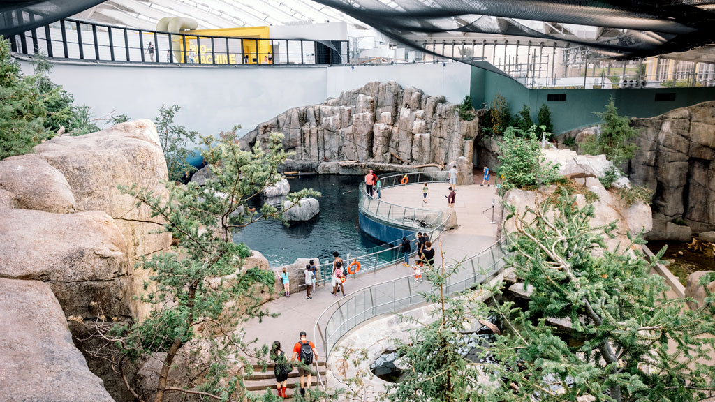 Montreal's redesigned Biodome showcases Taillibert's roof